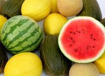 melon sandia frutas verano