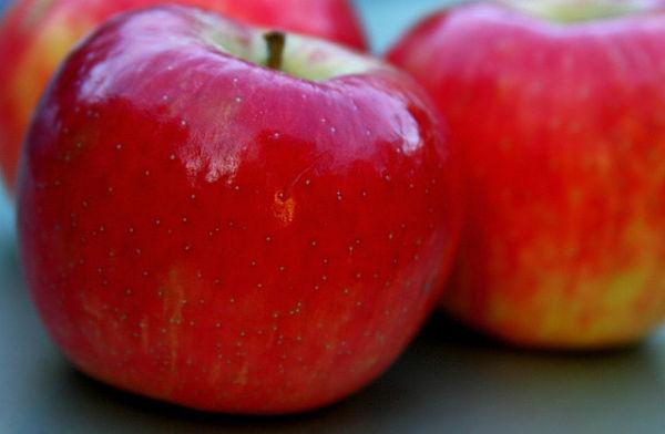 piel manzana adelgazar