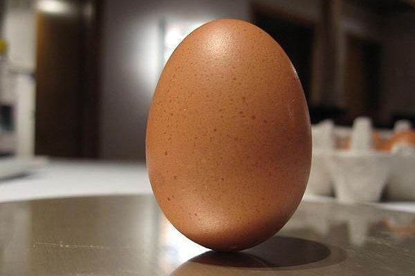 cuantos huevos semana