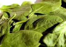 verduras calcio