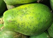 frutas con proteínas