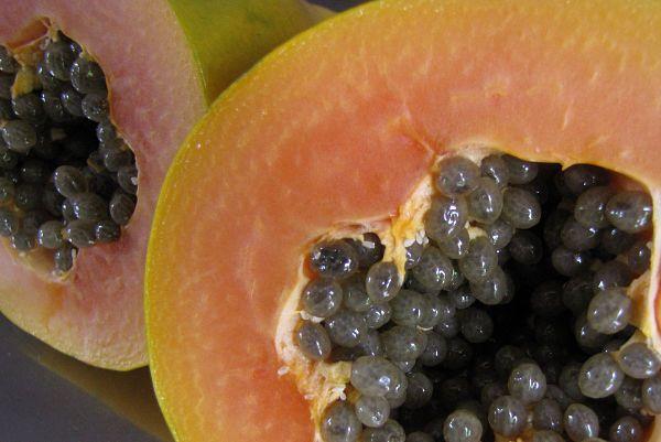 propiedades de la papaya