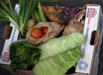 comida organica mas sana