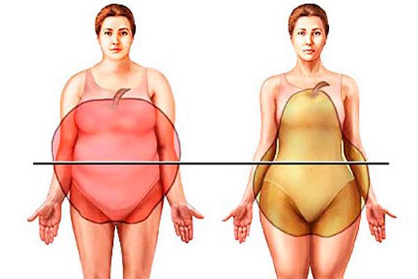 cuerpo manzana cuerpo pera