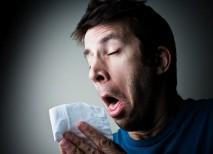 alergia polen