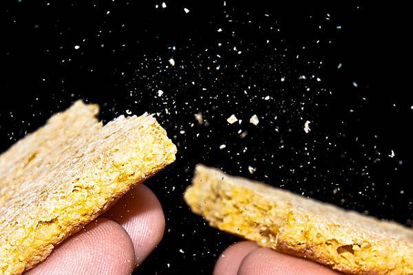 cereales micotoxinas