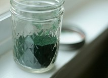 propiedades alga chlorella
