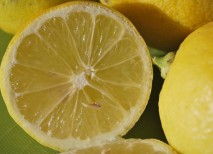 vitaminas cerebro