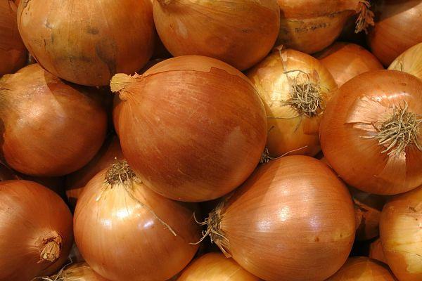 vitaminas de la cebolla
